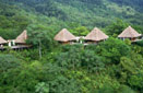 Click - Rain Forest Adventure    Vacation Package